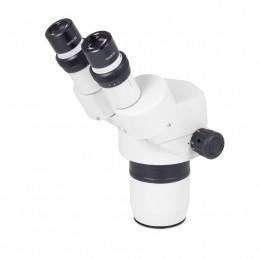 Tête binoculaire SMZ-168 60°